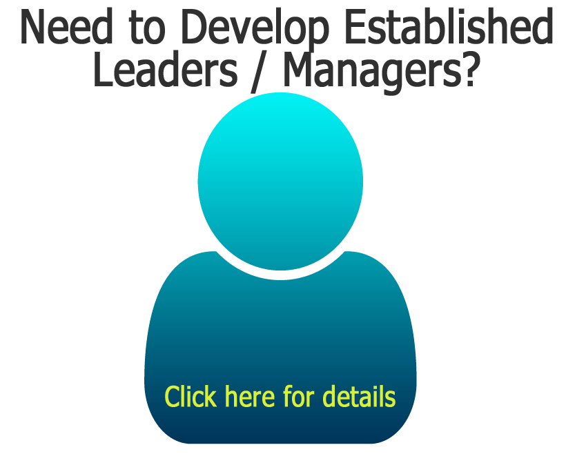 Development for Established Managers and Leaders